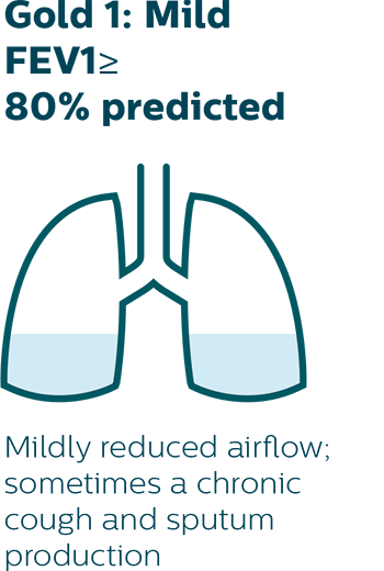 Mildly reduced airflow; sometimes a chronic cough and sputum production