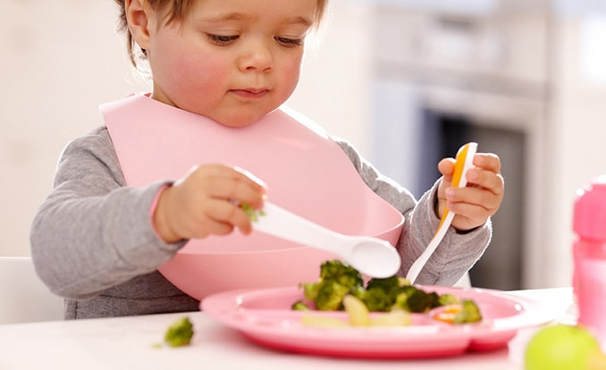 Toddler mealtime tips